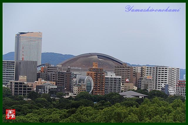s-20130728-福岡城0069