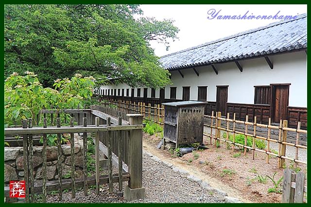 s-20130728-福岡城0088