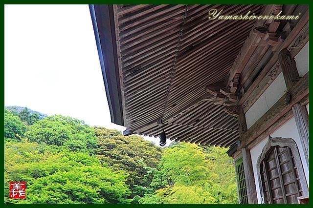 s-20130518両子寺018