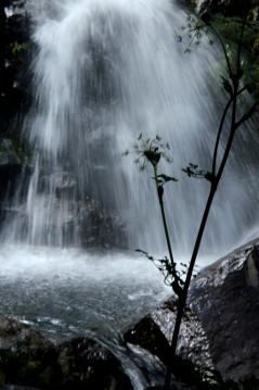 白水の滝4a