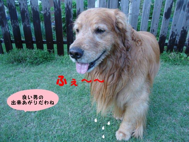 011_20130523202300.jpg