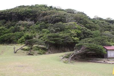 20130527友ヶ島15