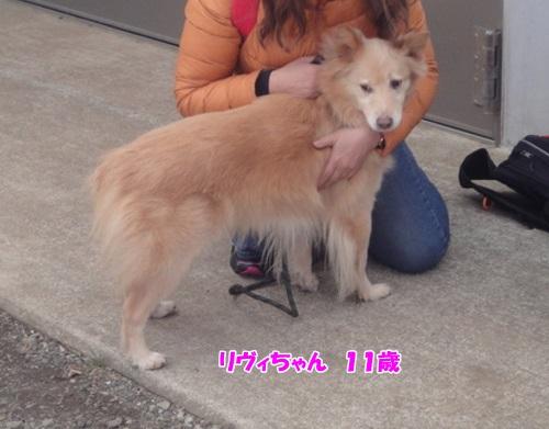 20140212茅ケ崎