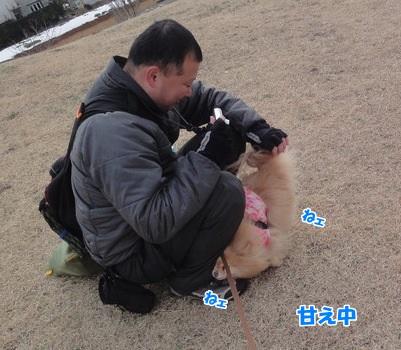 20140212茅ケ崎96