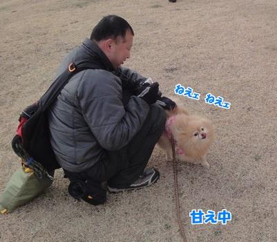 20140212茅ケ崎95