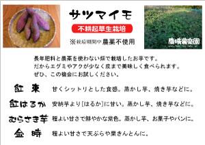 Pop_Satoimo4syu.jpg