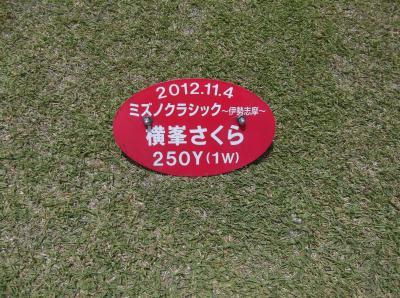 DSCF0090_convert_20130520133034.jpg