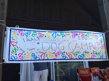 IMG_0024dogcamp7.jpg