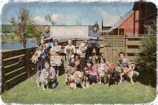 dogcamp.jpg