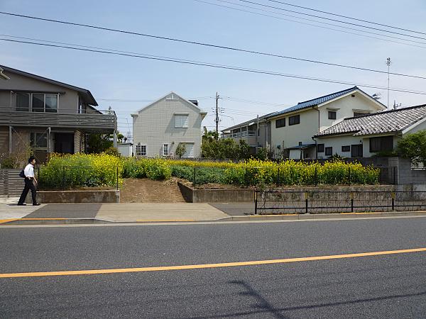 P1050320.jpg