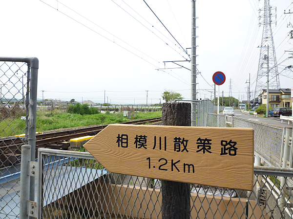 P1050414.jpg