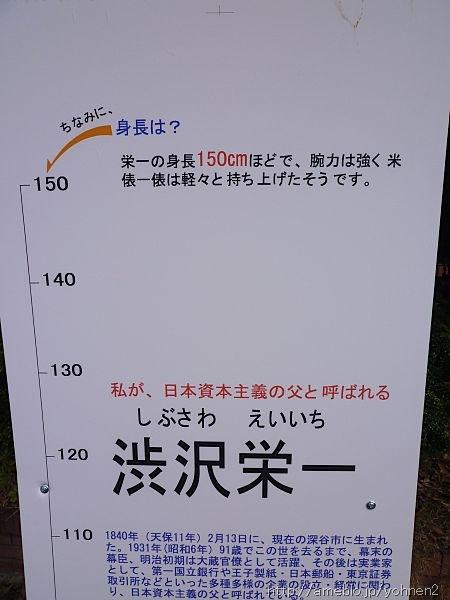 P1010181