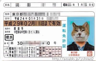 免許証表面(新)