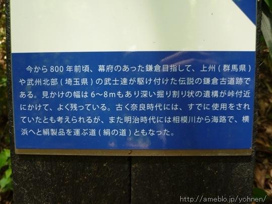 P1050346_R