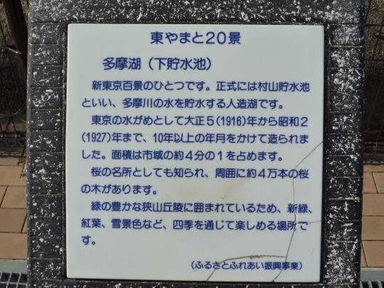P1030395.jpg