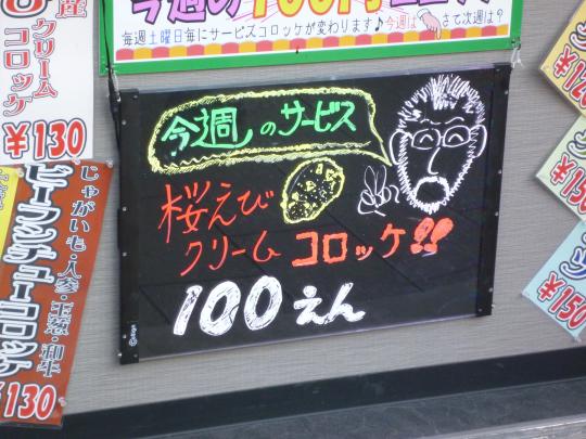 P1040261.jpg