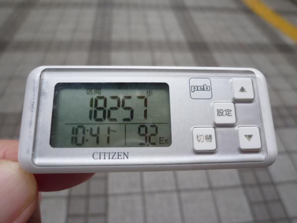 P1040589.jpg