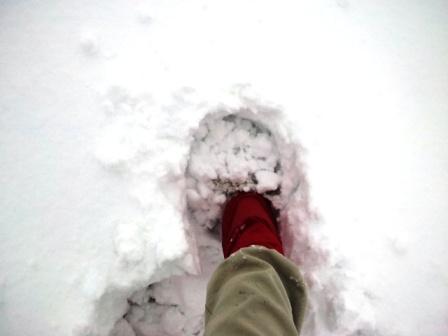 除雪141214g