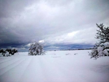 除雪141214h