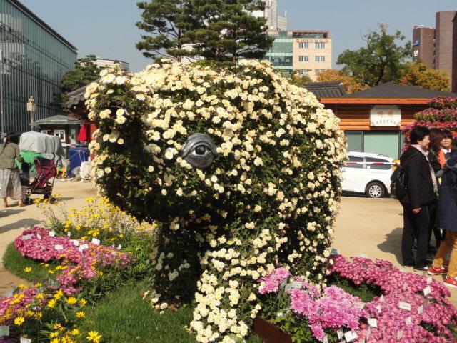 2013年10月27日 チョゲサ菊祭 象