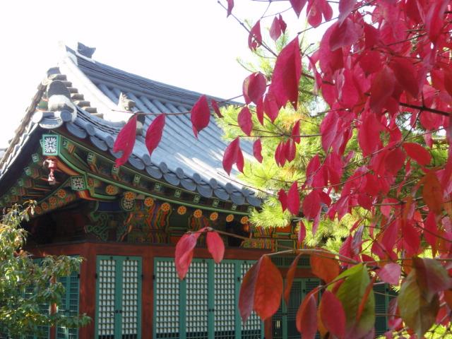 2013年10月30日 徳寿宮紅葉