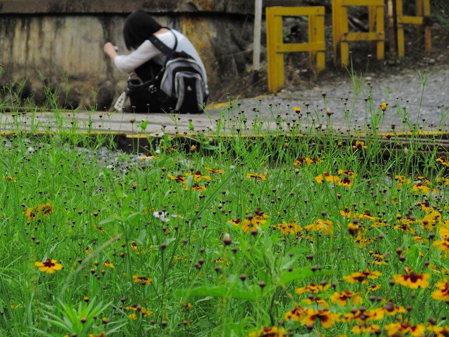 秩父鉄道SLSLを狙うカメラ女子05