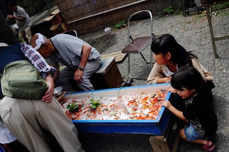 川崎大師風鈴エピローグ03金魚釣り02