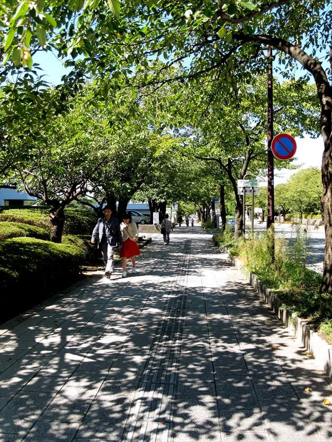山形市内スナップ霞城へのアプローチ道06