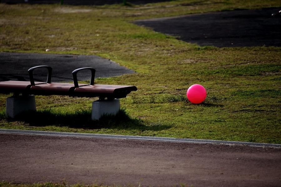 仙台空港撮影スナップ公園でみかけたボール01