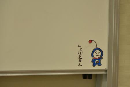 DSC_2524a.jpg