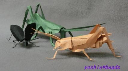 鳴く虫たち