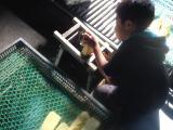 fc2blog_201312302138533bc.jpg