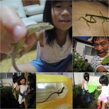 カナヘビ&カマキリ