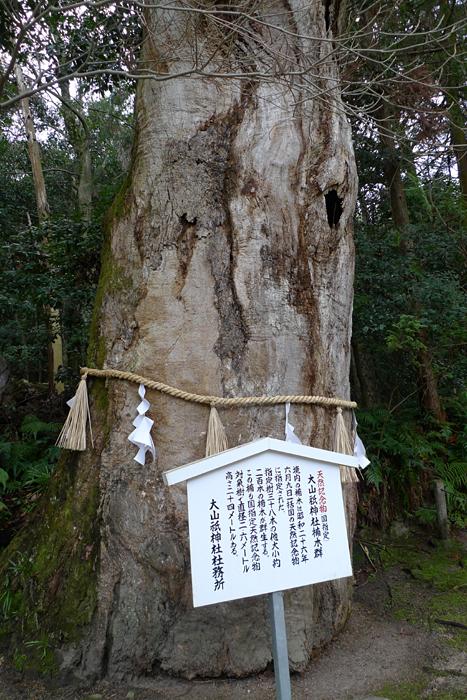大山祇神社   愛媛県  13