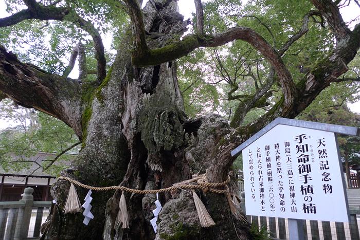 大山祇神社   愛媛県  14