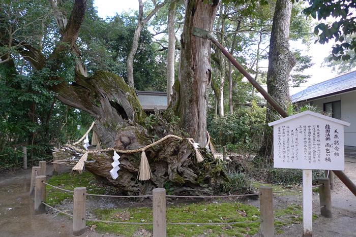 大山祇神社   愛媛県  16