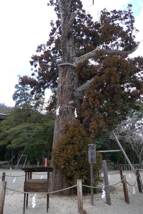 吉備津彦神社  岡山県  11