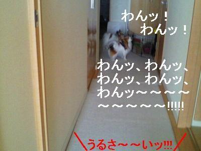 2013041913200000.jpg