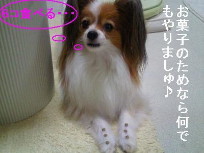 2013101119120000.jpg