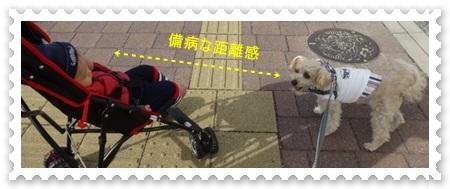 DSC03372_20141108232400eee.jpg