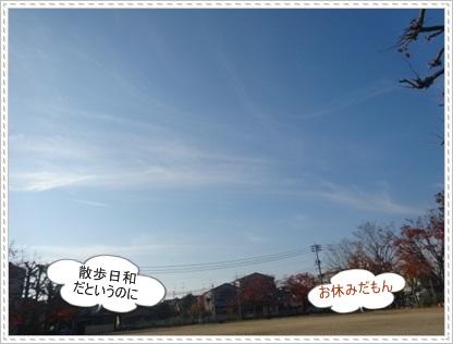 DSC03880_20141124003605e1c.jpg