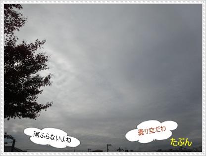 DSC03975.jpg