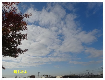 DSC04000_20141127233212f85.jpg