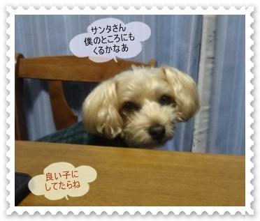 DSC04511_20141214004057ec1.jpg