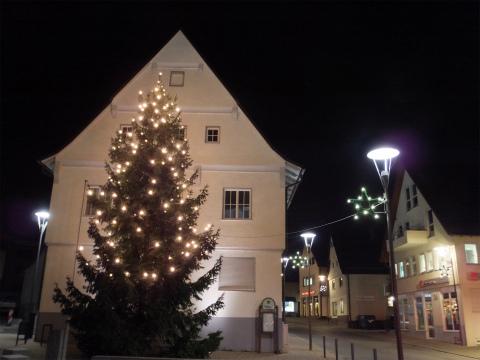 市役所前のクリスマスツリー