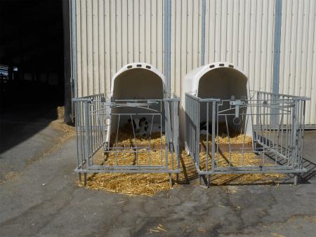 子牛の小屋1