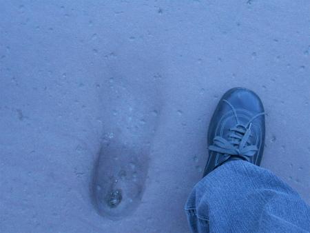 ハイデルベルク城の足跡