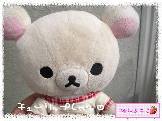 ちこちゃんのチューリップ観察日記★21★咲き乱れ??-1