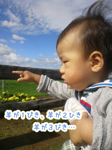 DSC_01980013.jpg