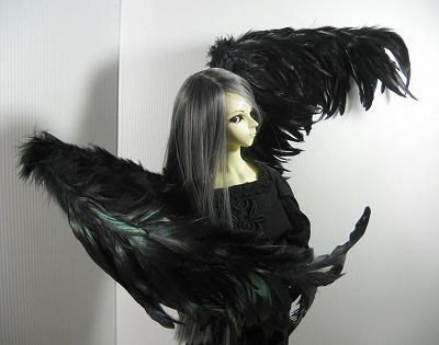torihane-order 004